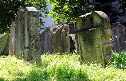 cremated Estate Litigation Bury Cremate Will Challenge Dispute over Burial Deceased Estate Lawyer Queensland Brisbane Sunshine Coast